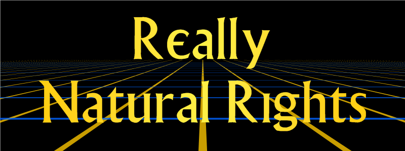Natural Rights And The New Republicanism Michael P Zuckert
